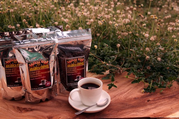 coffee arabica garden girlandboything1
