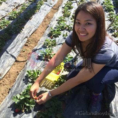 Strawberry farm Girlandboything4
