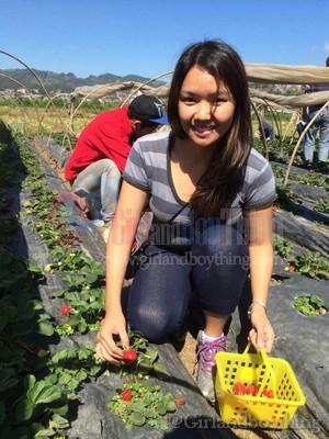 Strawberry farm Girlandboything5
