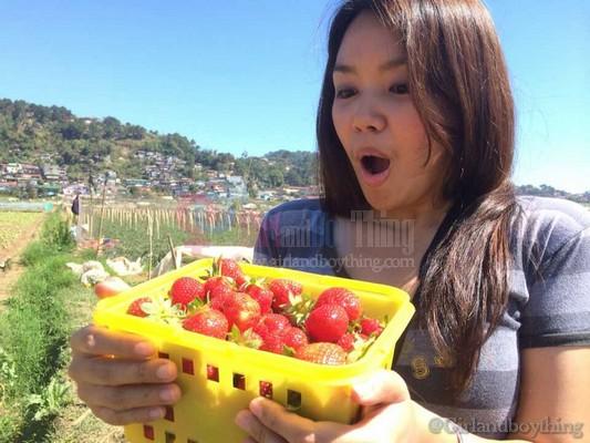 Strawberry farm Girlandboything6