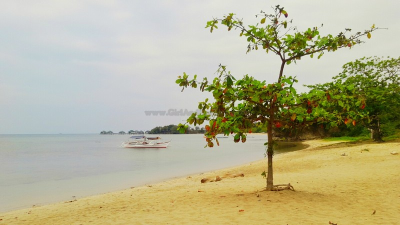 Aquaria Beach Resort10