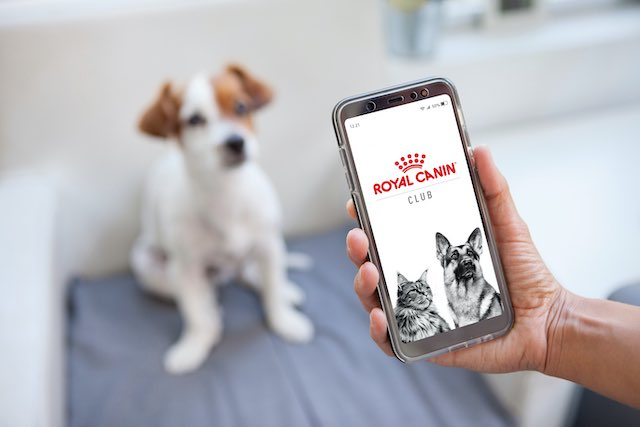 Get Your Fur-parenting Tips with Royal Canin Club App