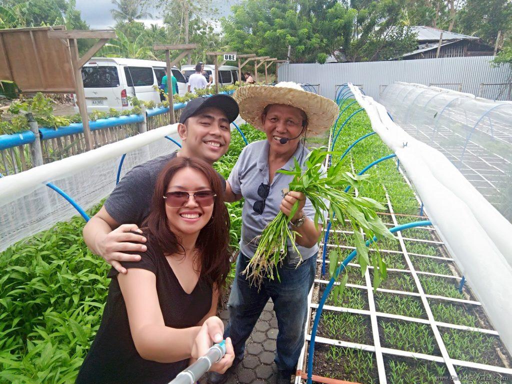Cervantes Farm: New Square Foot Organic Urban Gardening