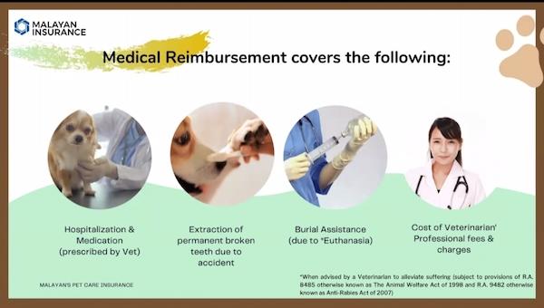 pet insurance philippines